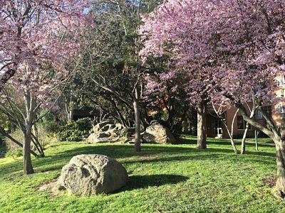 Terapias Naturales Sierra de Madrid
