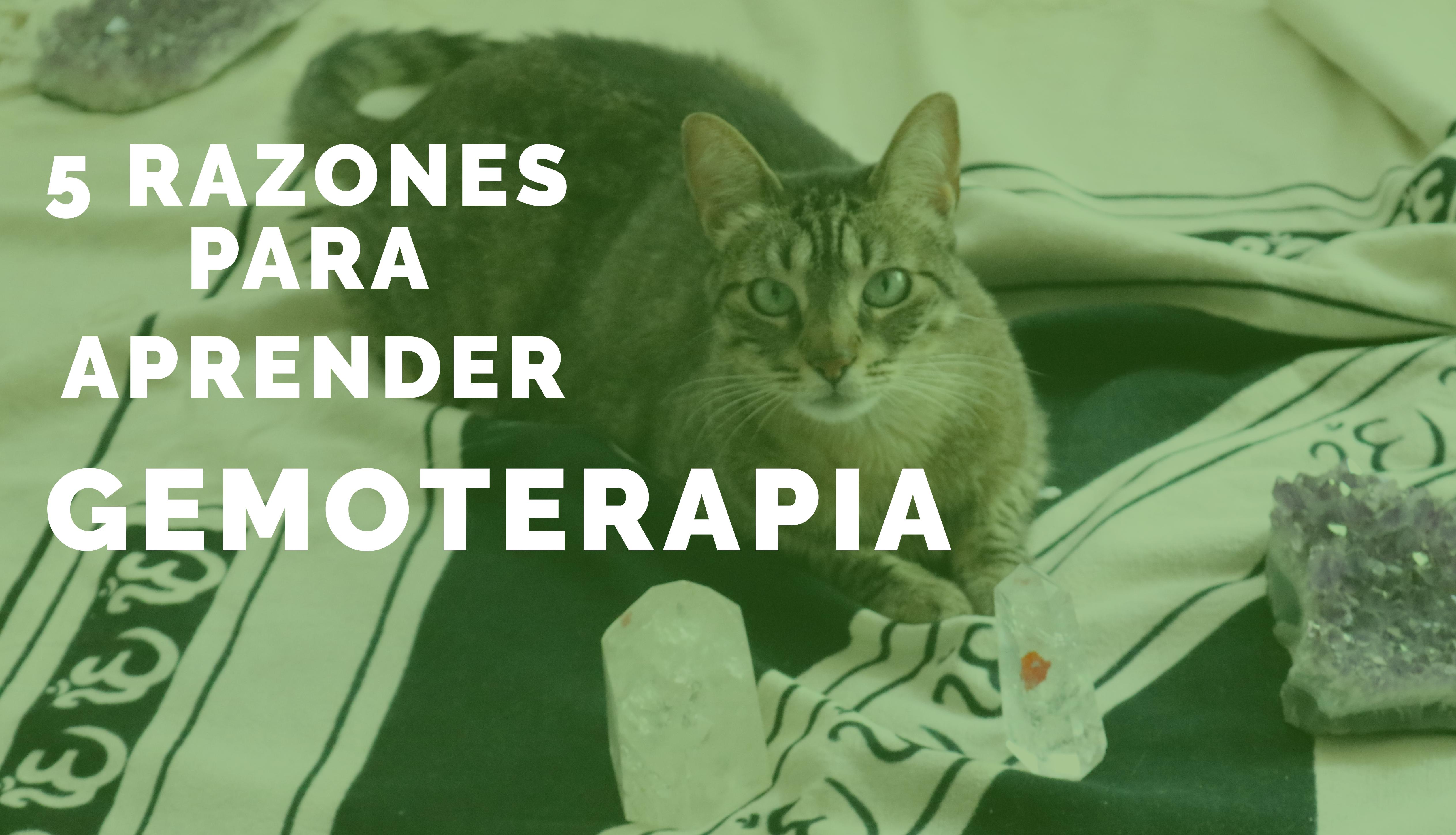 Gemoterapia Online