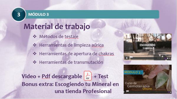 Curso Online de Gemoterapia