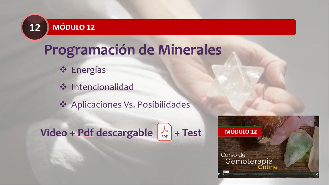 Programación Minerales Gemoterapia
